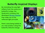 butterfly inspired displays