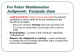 for peter stuhlmacher judgment forensic view