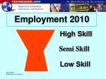 employment 2010