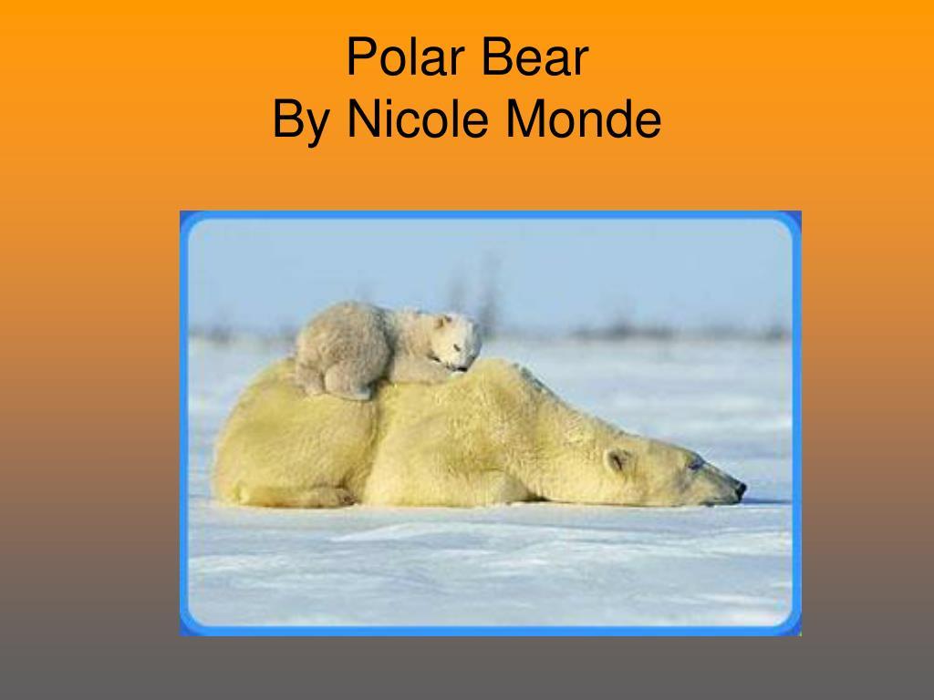 polar bear by nicole monde l.