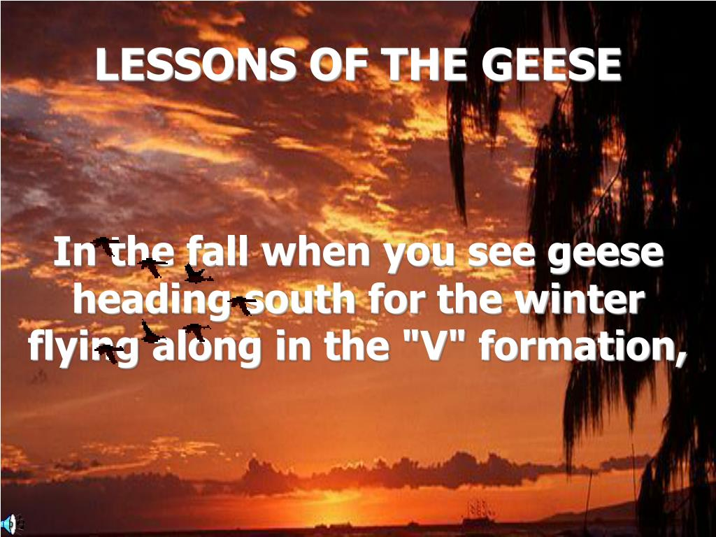 lessons of the geese l.