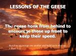 lessons of the geese11