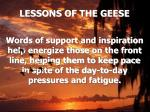 lessons of the geese12