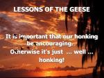 lessons of the geese13