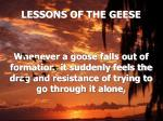 lessons of the geese7