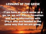 lessons of the geese9