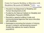 center for capacity building on minorities with disabilities research ccbmdr