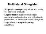 multilateral gi register