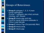 groups of rotaviruses