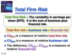 total firm risk
