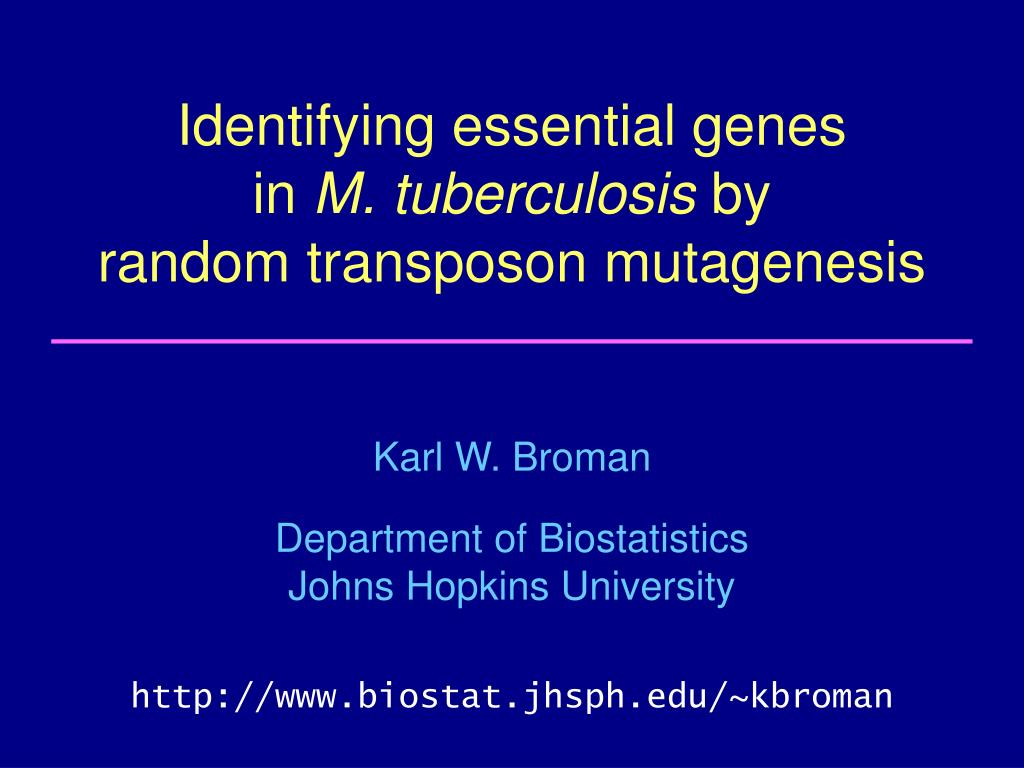 identifying essential genes in m tuberculosis by random transposon mutagenesis l.