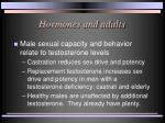 hormones and adults