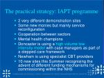 the practical strategy iapt programme