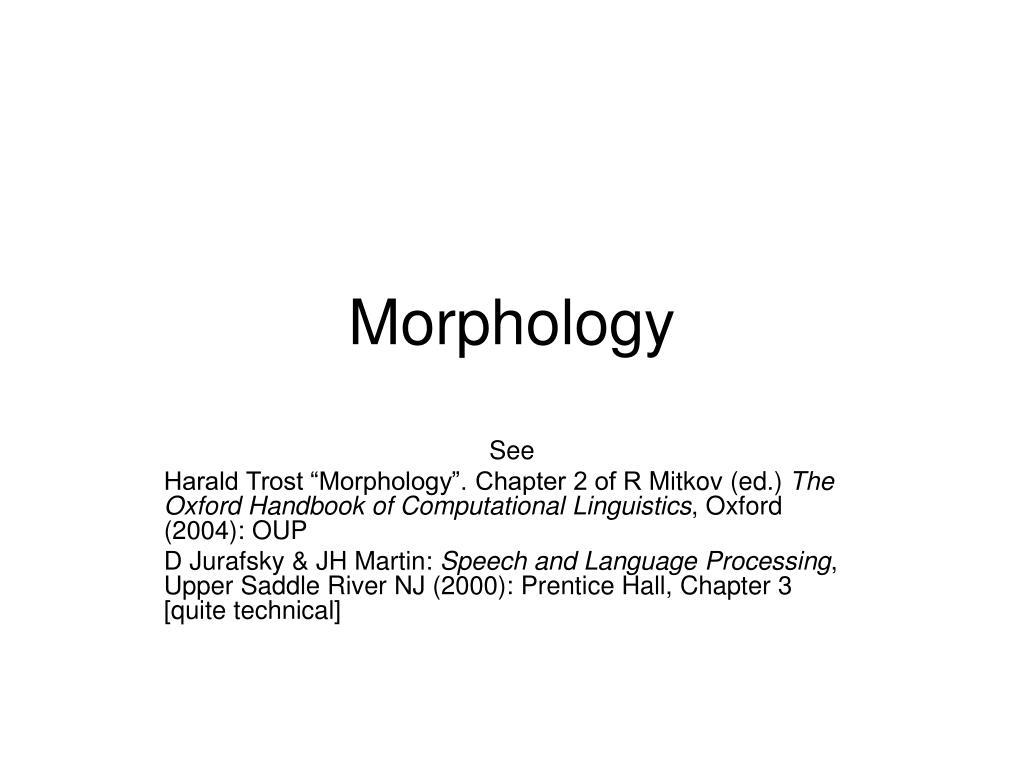 morphology l.