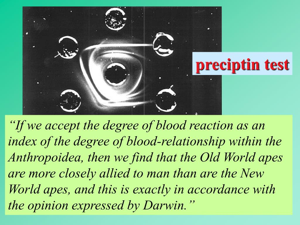 preciptin test