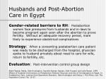 husbands and post abortion care in egypt
