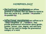morphology8