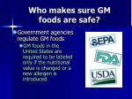 who makes sure gm foods are safe