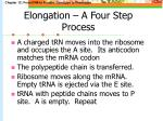 elongation a four step process