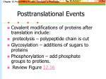 posttranslational events45