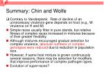 summary chin and wolfe