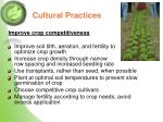 cultural practices