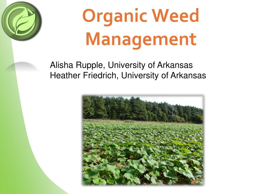 organic weed management l.