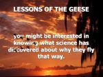 lessons of the geese3