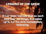lessons of the geese4