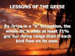 lessons of the geese5