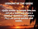 lessons of the geese6