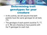determining trait genotypes for your creature13