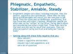 phlegmatic empathetic stabilizer amiable steady