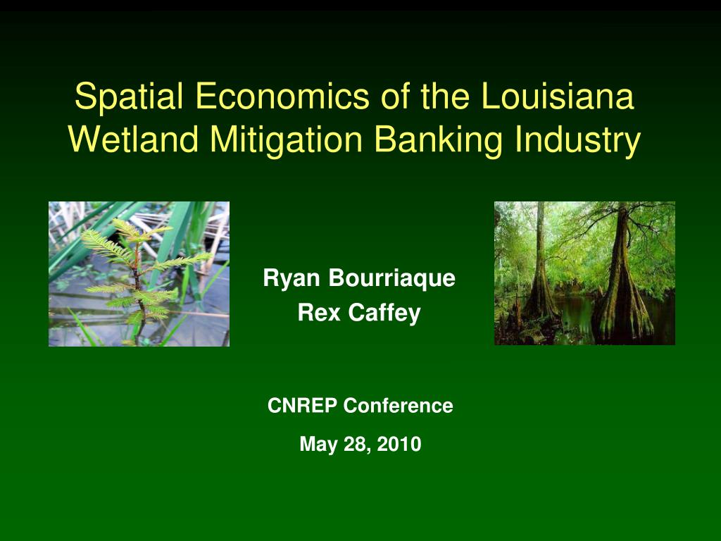 spatial economics of the louisiana wetland mitigation banking industry l.