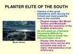 planter elite of the south