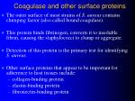 coagulase and other surface proteins