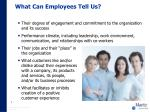 what can employees tell us