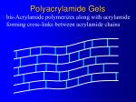 polyacrylamide gels10