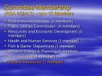 committee membership rsa 162 h 3 now 15 members