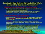 selecting the most bird and bat friendly sites what s needed to help make those determinations
