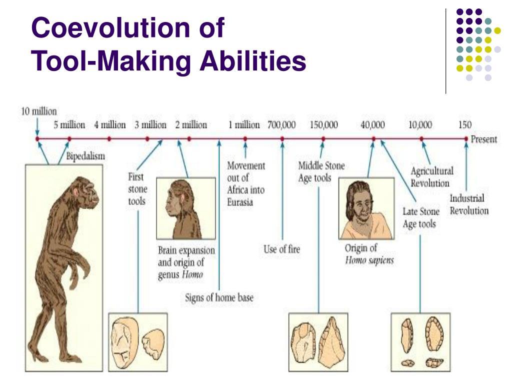 Coevolution of