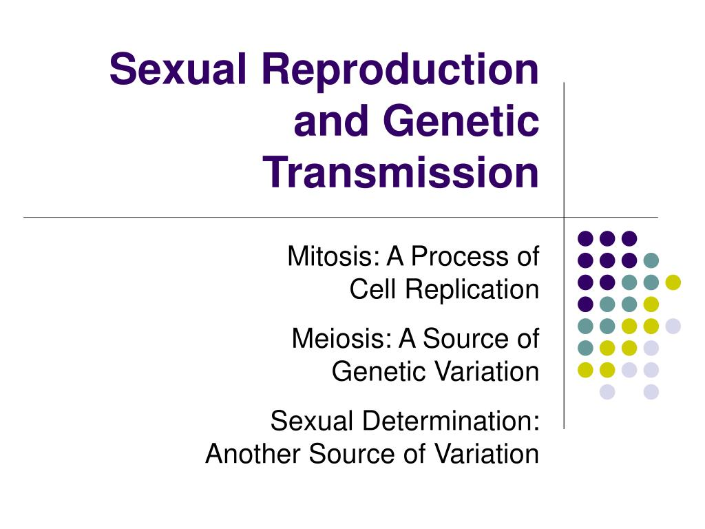 Sexual Reproduction and Genetic Transmission