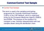 common control test sample1
