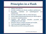 principles in a flash