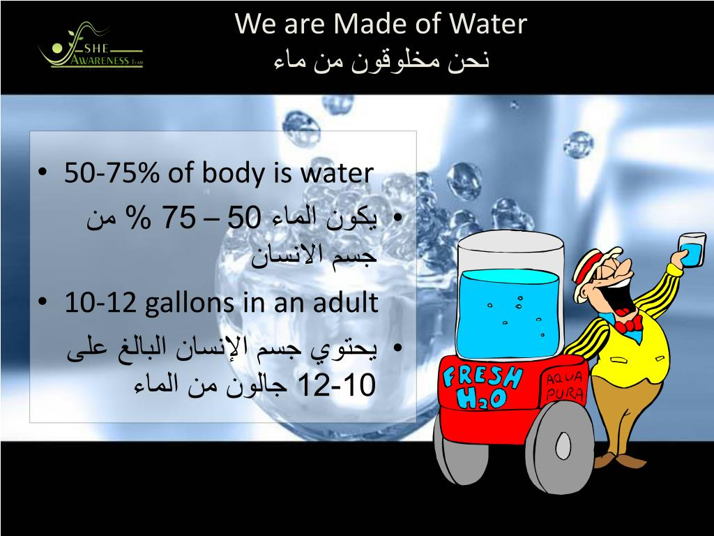 We are Made of Water