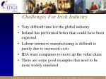 challenges for irish industry