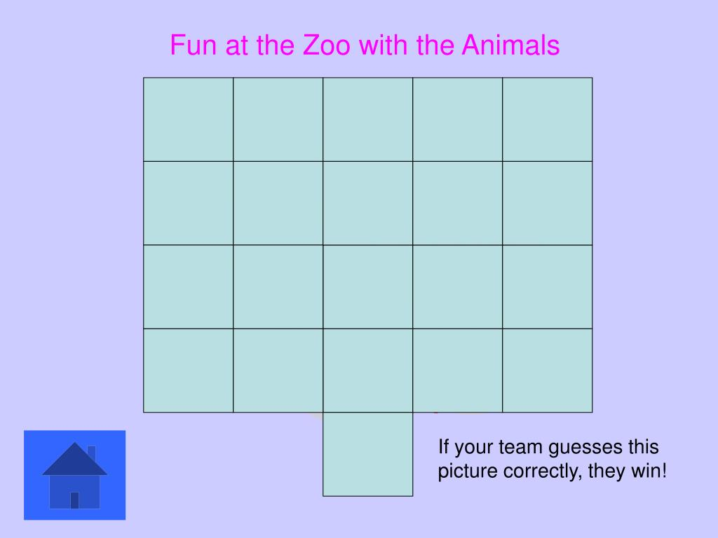 Fun at the Zoo with the Animals
