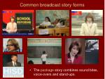 common broadcast story forms57