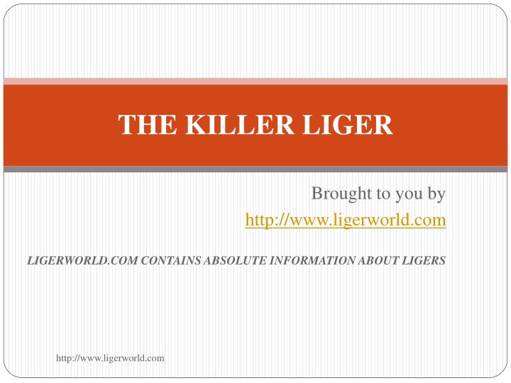 the killer liger n.