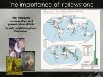 the importance of yellowstone